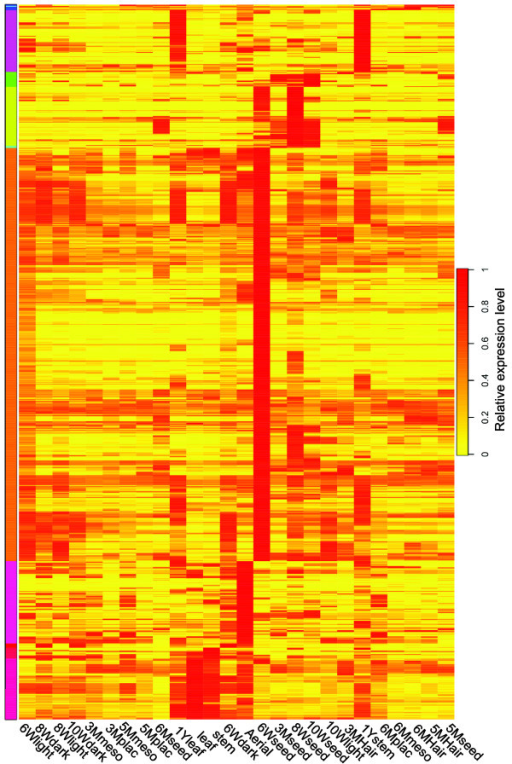 Tissue-specific gene expression heatmap. Transcripts with RPKM values at least three times as high in the indicated tissue than in any other tissues were selected and clustered using R with the package 'rsgcc'. The color scale indicates the tissue specificity score associated with all transcripts preferentially expressed in the various tissues and organs. The tissue specificity score is 1, if the gene is only expressed in one tissue.