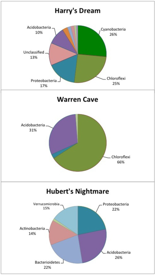 Pie chart showing the percentage of the major phyla identified in each cave by 16S rDNA analysis. The identification of the other, minor phyla are given in Tables 4–6.