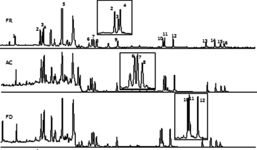 GC-MS chromatogram corresponding to frozen, autoclaved and freeze-dried materials. Identification of peaks: 1, BcF; 2, BaA; 3, Chr; 4, CPP; 5, 5-MC; 6, BbF; 7, BkF; 8, BjF; 9, BaP; 10, IcdP; 11, DahA; 12, BghiP; 13, DalP; 14, DaeP; 15, DaiP; 16, DahP