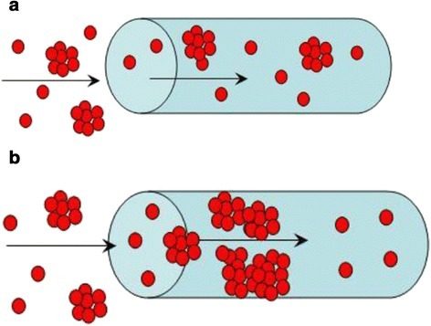 Filling of the membrane pores during the first (a) and further (b) stages of modification. The nanoparticles inside the polymer macropores block them and form secondary porosity.