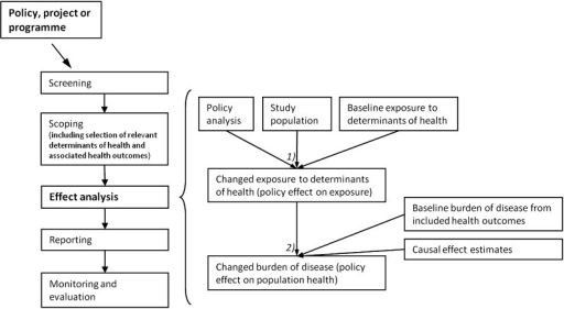 Overview of the process of health impact assessment with specific focus onquantitative effect analysis. The left side of the figure shows a generalisedHealth Impact Assessment process, while the right side focuses on the effectanalysis stage, involving two subanalyses: (1) the potential effects of the policyon population (or subpopulation) exposure to selected determinants of health(changed exposure) were estimated based on an analysis of the policy, studypopulation characteristic and information on baseline level of exposure todeterminants of health. (2) Next, the potential effect of changed populationexposure to determinants of health on burden of disease was estimated based on theresults of the first subanalysis (change in exposure to health determinants),information on baseline level of burden of disease from the included healthoutcomes and causal effect estimates of the associations between includeddeterminants of health and health outcomes. The change in burden of disease wasestimated for both each determinant of health and each health outcome andaggregated for all included health outcomes (model was developed based on7).