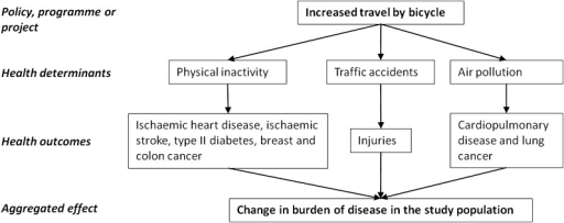 Analytical model of the health impact assessment of increased cycling to placeof work or education. The figure illustrates the relationship between policyproposal, relevant health determinants, health outcomes and aggregatedeffect.