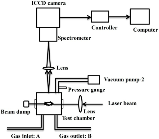 schematic diagram of the laser