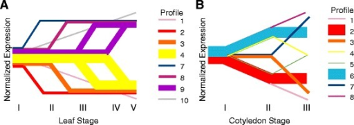 Differentially expressed gene profiles in leaf and cotyledon development. Differentially expressed genes from (a) leaves and (b) cotyledons were classified into expression profiles based on significant changes in gene expression between subsequent stages. Line thickness is proportional to the number of genes included in each profile. See Methods for more detail