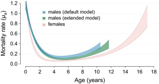 Age‐specific mortality estimates for male and female African lions of the Serengeti population. Polygons represent 95% credible intervals of age‐specific mortality rates. Mortality rates are plotted until the ages when 95% of a synthetic same‐sex cohort would be dead. The blue polygons represent male mortality rates obtained from the default model that accounts for natal dispersal. The green polygons represent male mortality rates obtained from an extended model, where secondary dispersal was accounted for additionally to natal dispersal by entering last detection ages of likely secondary dispersers as age of right‐censoring.