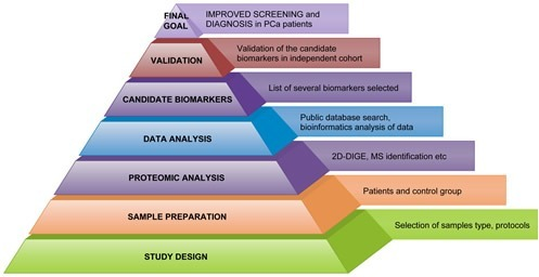 Workflow in Workflow in PCa proteomics