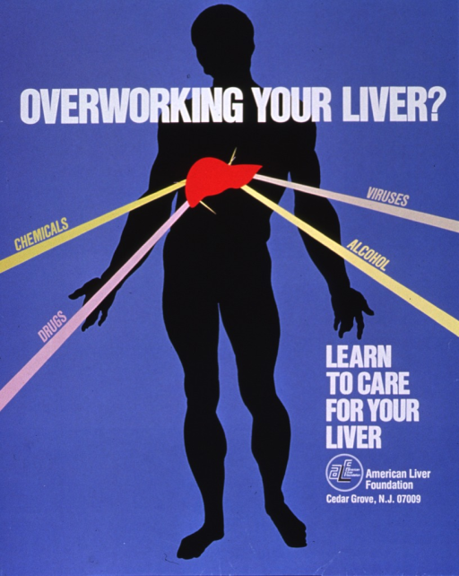 <p>Light blue poster with multicolor lettering.  Title near top of poster.  Visual image is a sihouette of a human figure, with a bright red liver on its chest.  Four lines radiate from the liver.  The lines are labeled chemicals, viruses, drugs, alcohol.  Caption and publisher information near lower right corner.</p>
