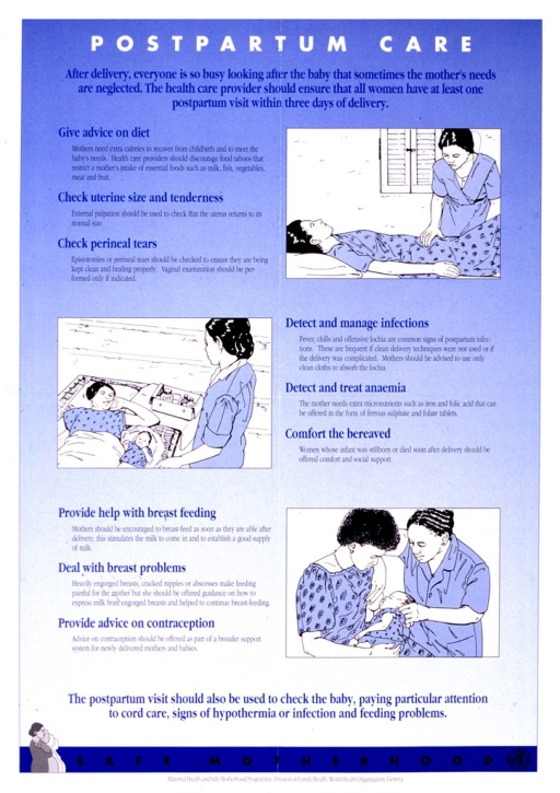 <p>Predominantly blue poster with multicolor lettering.  Title at top of poster.  Poster lists topics that a health worker can address during a postpartum visit:  maternal and infant nutrition, recovery from delivery, and social support.  Three illustrations depict a postpartum visit, including palpation of the uterus, taking a temperature to check for infection, and assisting with breastfeeding.  Note and publisher information at bottom of poster.</p>