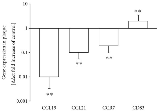 mRNA expression of CCL21/19, CCR7, and CD83 in vascular plaques compared to aortic tissue without plaque detection. In vivo changes (relative fold increases) in mRNA expression of CCL19, CCL21, CCR7, and CD83 in carotid plaques compared to healthy aortic material. *P < 0.05, **P < 0.01, (n = 47) versus aortic tissue (n = 14).