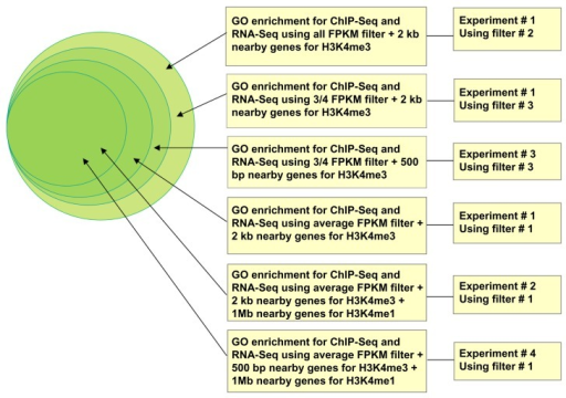 GO enrichment analysis for overlapping genes in Experiment 1 through Experiment 4. The GO enrichment level increases toward inner circle. The innermost circle has the highest GO enrichment level.