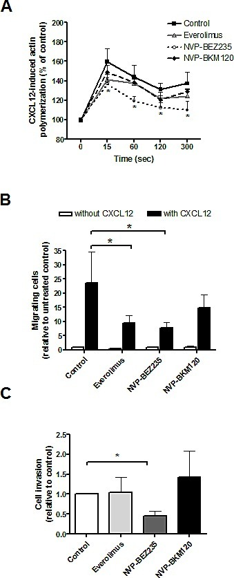 PI3K/Akt/mTOR inhibitors effect on CXCL12-induced MCL cell migration and invasionA, Primary MCL cells were preincubated with 5 μM everolimus, 1 μM NVP-BEZ235 or 1 μM NVP-BKM120 for 1 hour before CXCL12 (200 ng/mL) addition. Polymerized actin content was determined at the indicated time points after CXCL12 addition. Results are displayed relative to the samples (n=7) before chemokine stimulation (100 %). Bars represent the mean ± SEM. B, MCL samples (n=7) were assayed for chemotaxis toward CXCL12 after 1 hour of preincubation with the drugs. Relative number of migrating cells to the untreated control without CXCL12 is represented. Bars correspond to the mean ± SEM. C, Samples (n=7) were assayed for invasion toward CXCL12 through matrigel invasion chambers. Invasion is represented as the ratio between invasive cells and input viable cells, relative to the untreated control. Bars correspond to the mean ± SEM. *, P < 0.05.