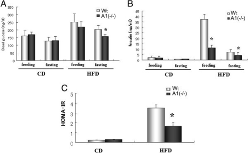 Blood glucose and insulin levels. A. Blood glucose levels in mice fed with normal chow diet (CD) and after high fat diet (HFD) challenge. B. Blood insulin levels in mice fed with CD and after HFD challenge. C. HOMA-IR index in mice fed with CD and after HFD challenge. Wt: wild type mice, A1(−/−): AMPD1 deficient homozygote mice. *: significant difference between Wt and A1(−/−) mice.