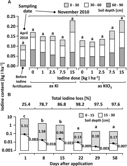 (A) Calcium chloride extractable iodine (12.5 mM CaCl2 solution) at different depths in a sandy loam soil (Sl3) before and six months after iodine fertilization by means of soil drenches at different concentrations. Means with same letters do not differ according to Bonferroni MCP at α = 0.05 (One-way analysis of variance: probability level = 0.053, power = 0.78). n = 3. (B) Calcium chloride extractable iodine in soil samples collected at different intervals after a one-time iodine fertilization at 7.5 kg IO3--I ha-1 (One-way analysis of variance: probability level = 0.00, power = 1.00). n = 4.