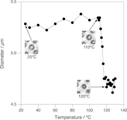 Change of the size of a C. liquefaciens cell as a function of temperature.Insets show microscopic images corresponding to the temperature of the data points indicated by arrows. Each images are 26 μm × 26 μm. A video clip showing the whole process is available in Movie S2.
