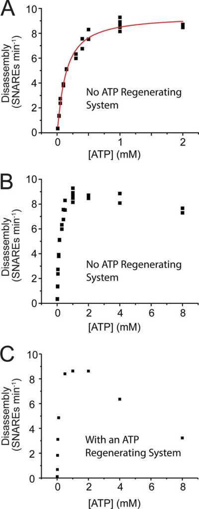 "Kinetic analysis of ATP-driven SNARE disassembly by NSF. Disassembly assays were set up and measured as described under ""Experimental Procedures,"" except that [ATP] was varied and MgCl2 was added to a concentration that was 1 mm above [ATP] in each case. A, Hill analysis with no ATP-regenerating system. Data were fit to a Hill equation yielding K0.5 = 0.14, Kcat = 9.4 SNAREs min−1, n = 1.12 with an R2 of 0.984. B and C, kinetics including high [ATP] conditions, showing inhibition at high [ATP]. B, no ATP-regenerating system (data from panel A are replotted along with higher [ATP] data). C, ATP-regenerating system added."