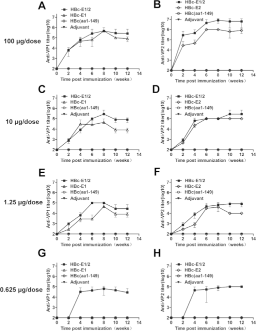 Kinetics of anti-epitope antibody responses.Groups of five mice were immunized with 0.625, 1.25, 10 and 100 μg/dose i.p. at weeks 0, 2 and 4 with HBc-E1/2, HBc-E1, HBc-E2 or HBc(aa1-149) as described in the Materials and Methods. Sera were collected at 0, 2, 4, 6, 8, 10 and 12 for the serological tests and analyzed by ELISA to measure the epitope-specific antibody response, the VP1(aa208-222)-specific antibody response (A,C,E,G) and the VP2(aa141-155)-specific antibody response (B,D,F,H). All serum samples were prepared using 10-fold dilution series, and the first dilution was 100-fold. Each point represents the mean reciprocal log10 endpoint titers and standard error.